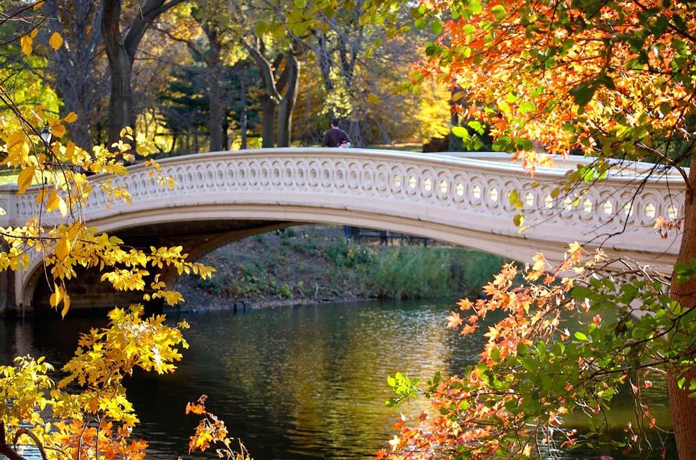 Atracciones New York: bow bridge en central park