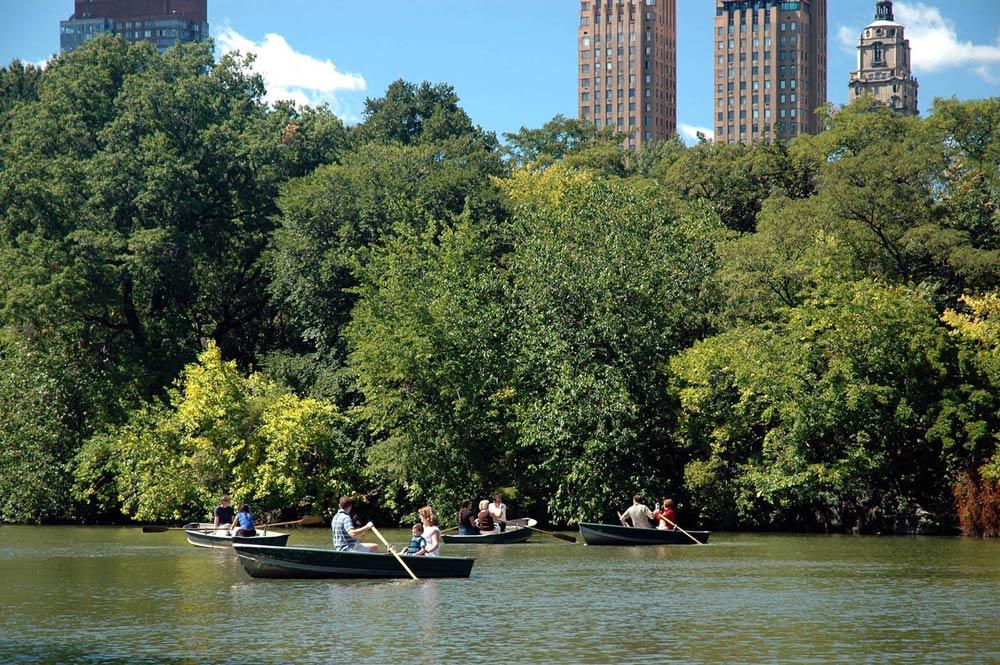 Cosas que ver en Nueva York: el central park