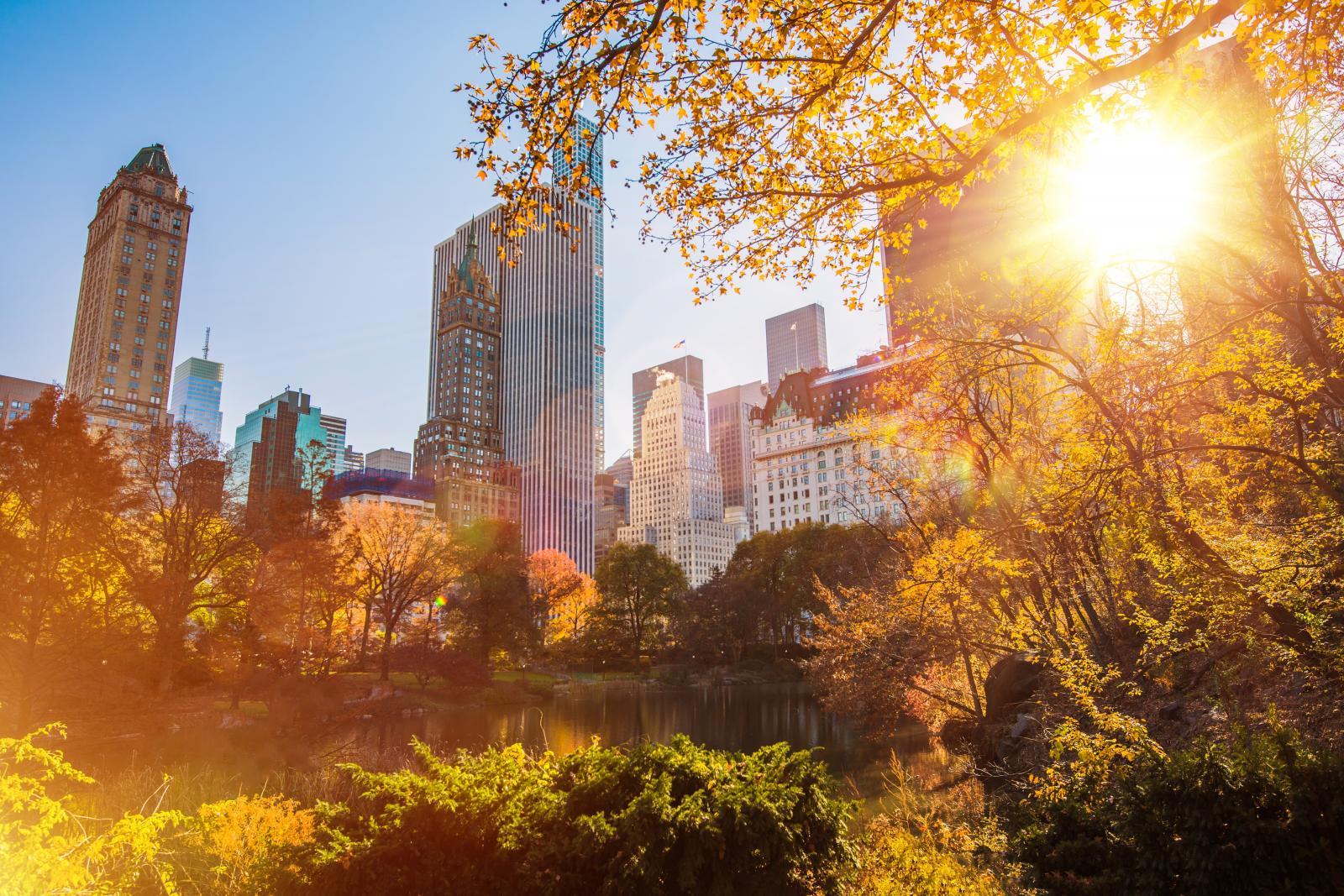 El Central Park de Nueva York entre las 10 mejores cosas que ver en Nueva York