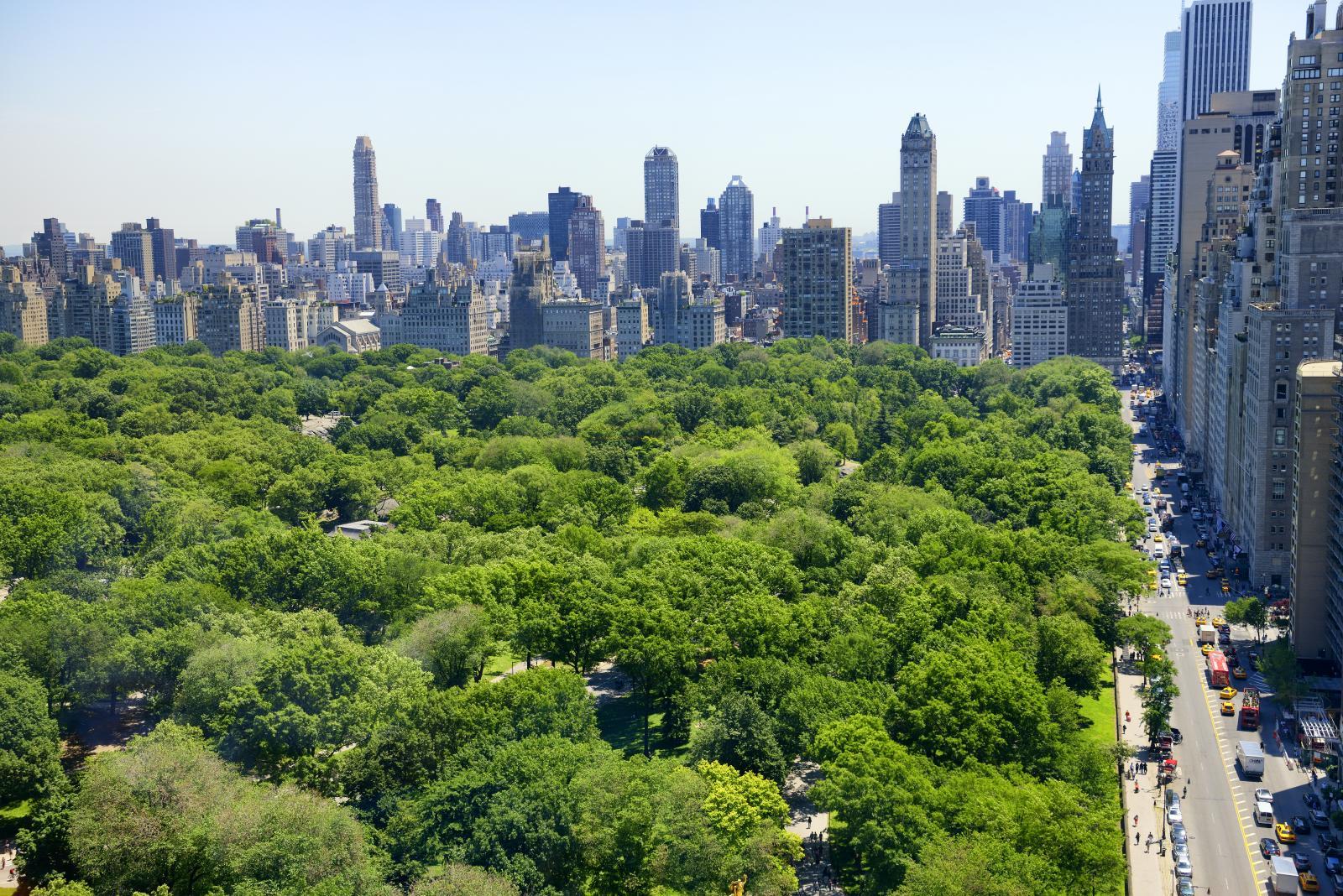 que hacer en Nueva York Gratis: Central Park