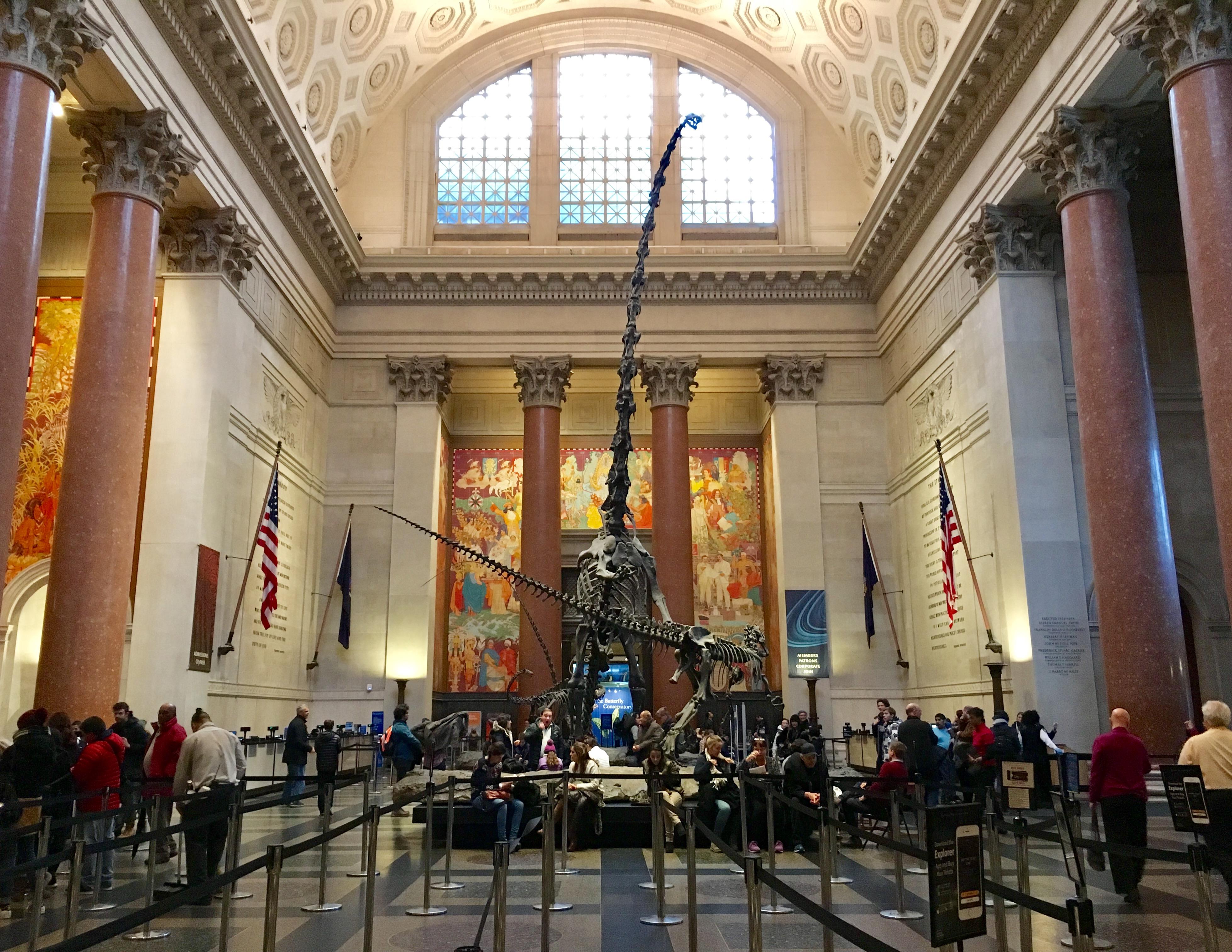 ∙Museo de Historia Natural de Nueva York ¿Por qué no puedes perdértelo?