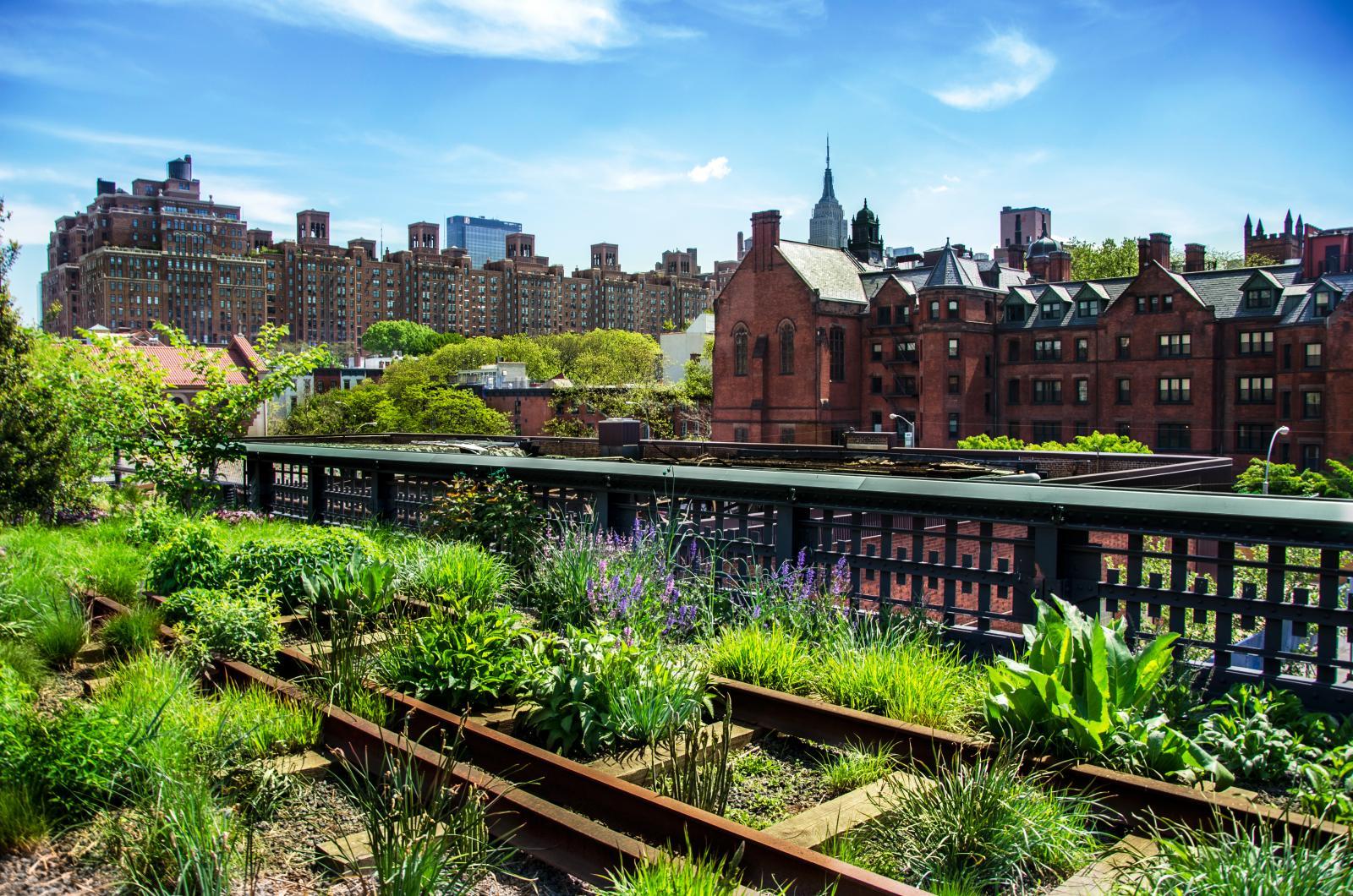 HIgh Line, urban public park, New York City, Manhattan