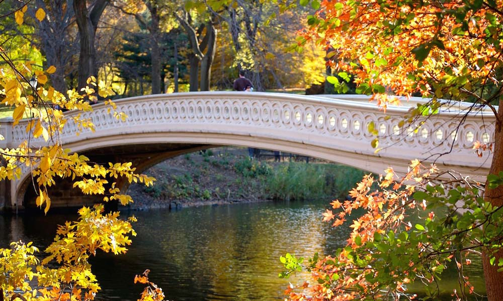 bow bridge im central park