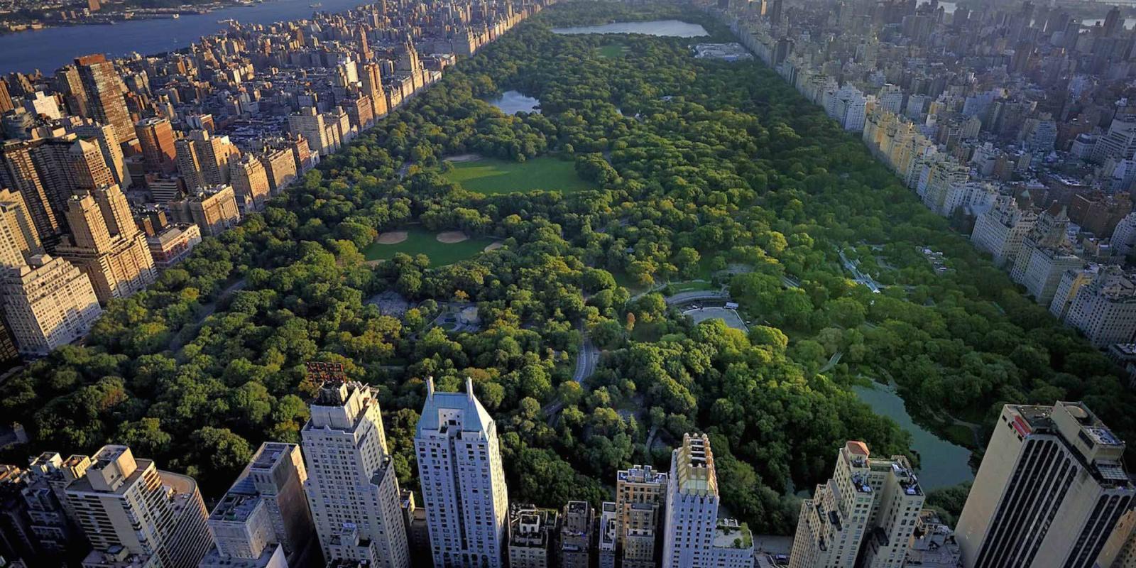 central park desde el aire