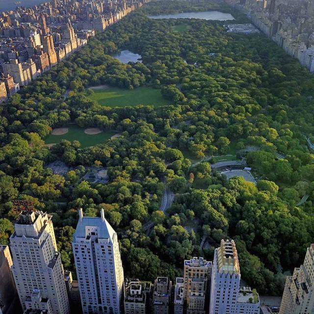 Todo sobre el Central Park de Nueva York