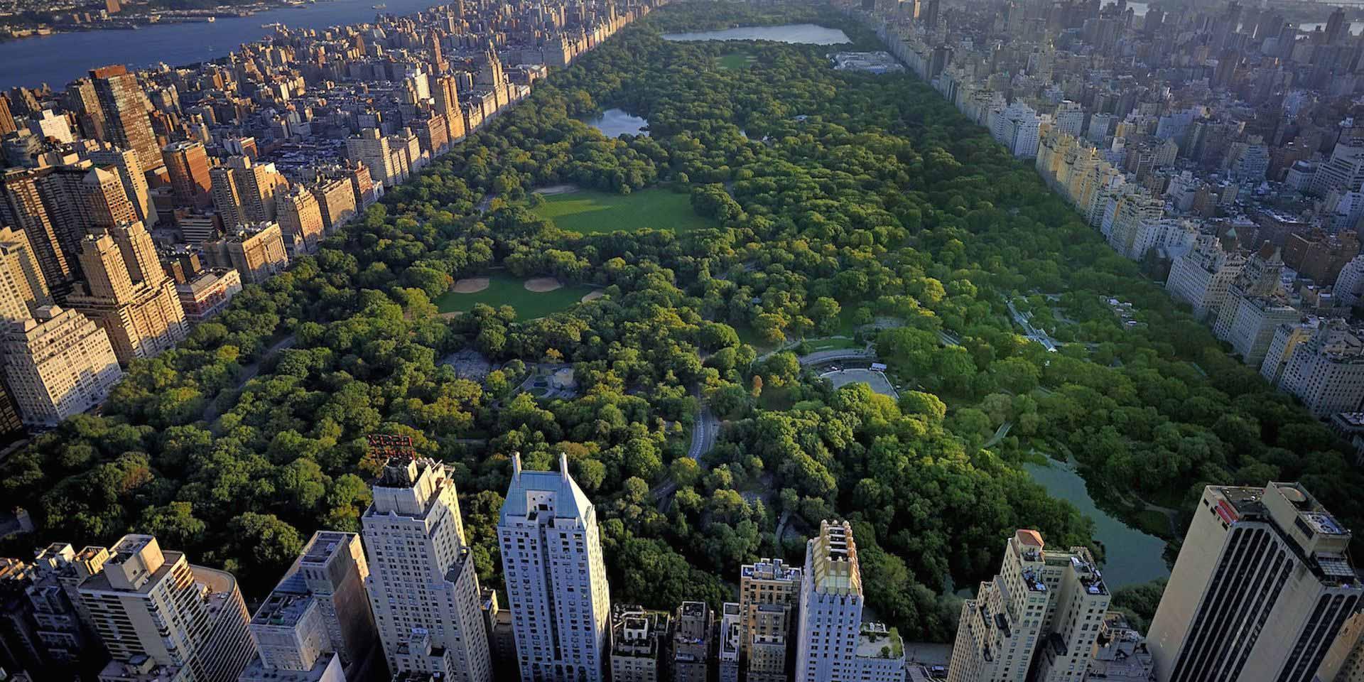 10 cosas que tienes que ver en el central park de nueva york. Black Bedroom Furniture Sets. Home Design Ideas