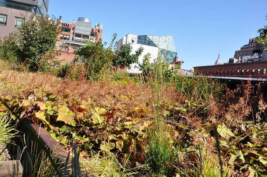 bepflanzung im high line park