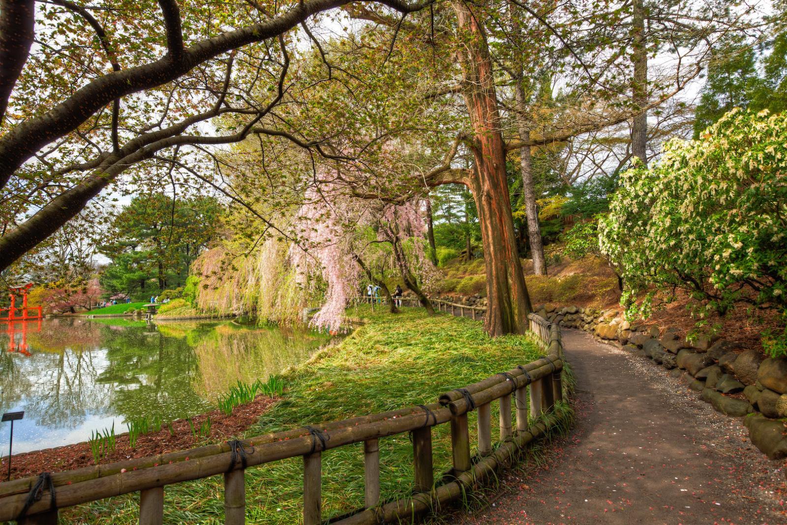 Botanic Garden Walkway