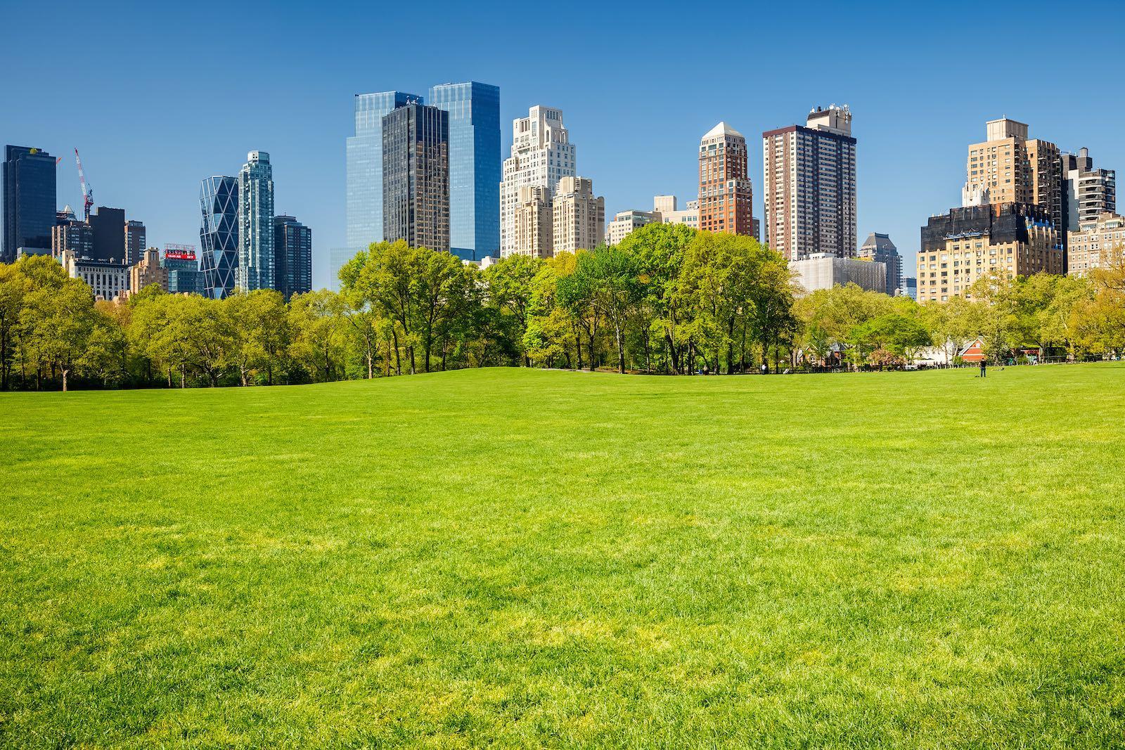 Un día de sol en el Central Park de Nueva York en verano