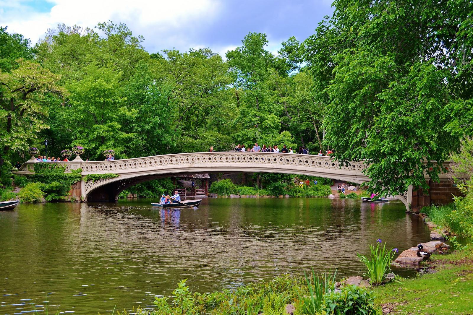 Verano en Central Park