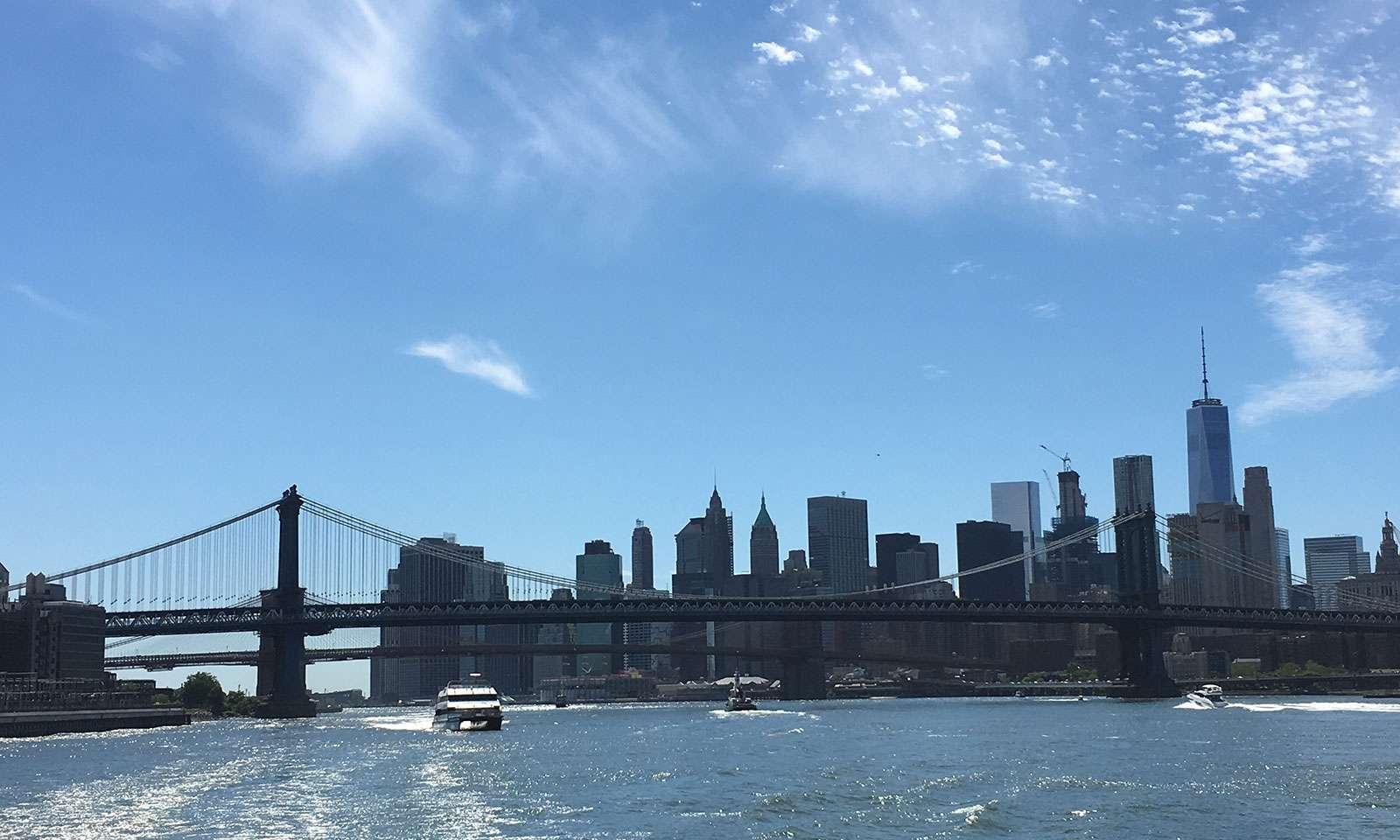 Crucero por Nueva York: nueva york desde el agua