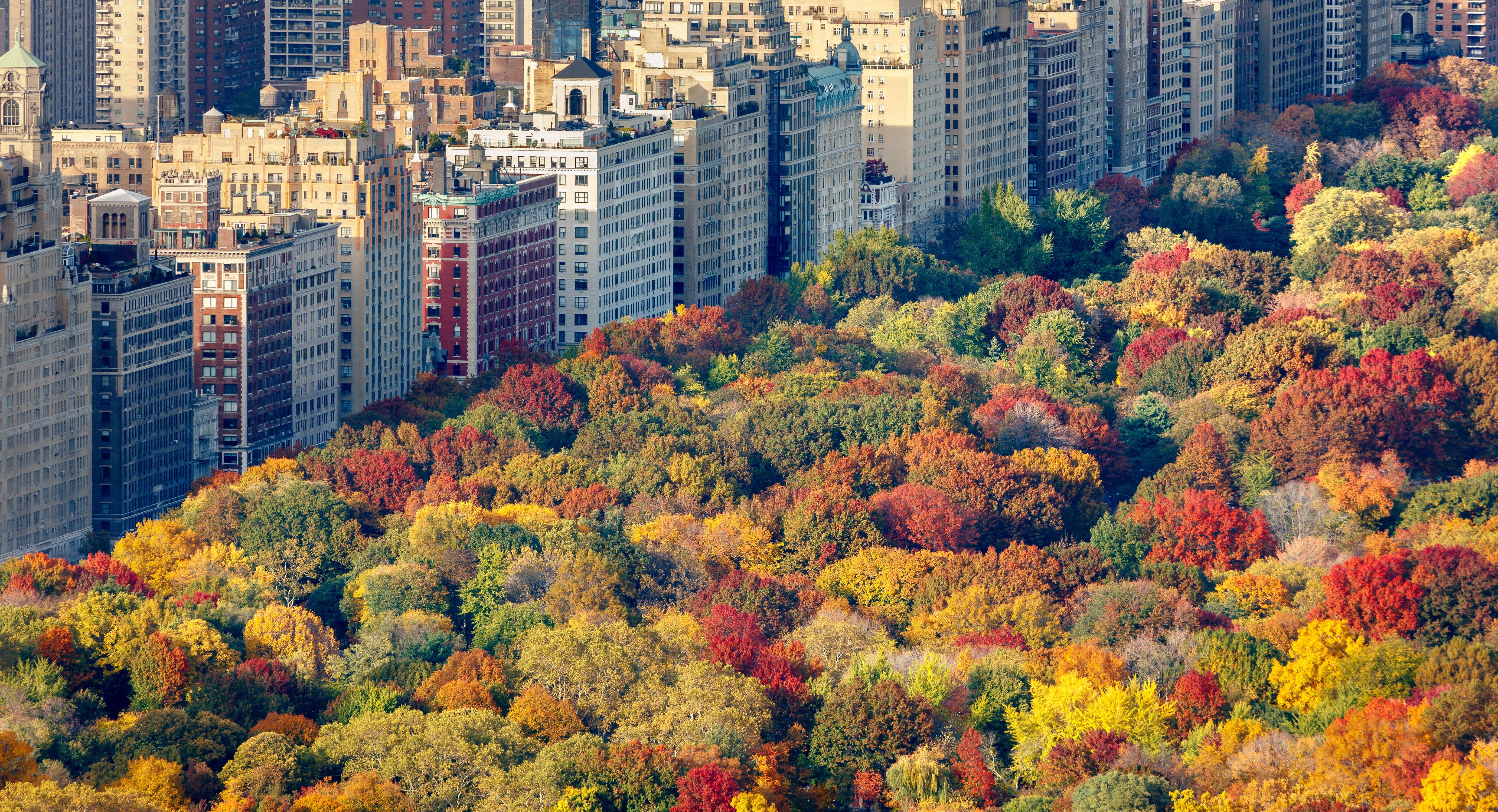 Nueva York en noviembre 2018 – Los mejores eventos e ideas de ocio!