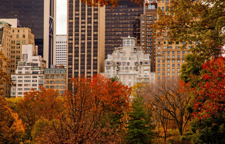 Clima En New York City En Noviembre