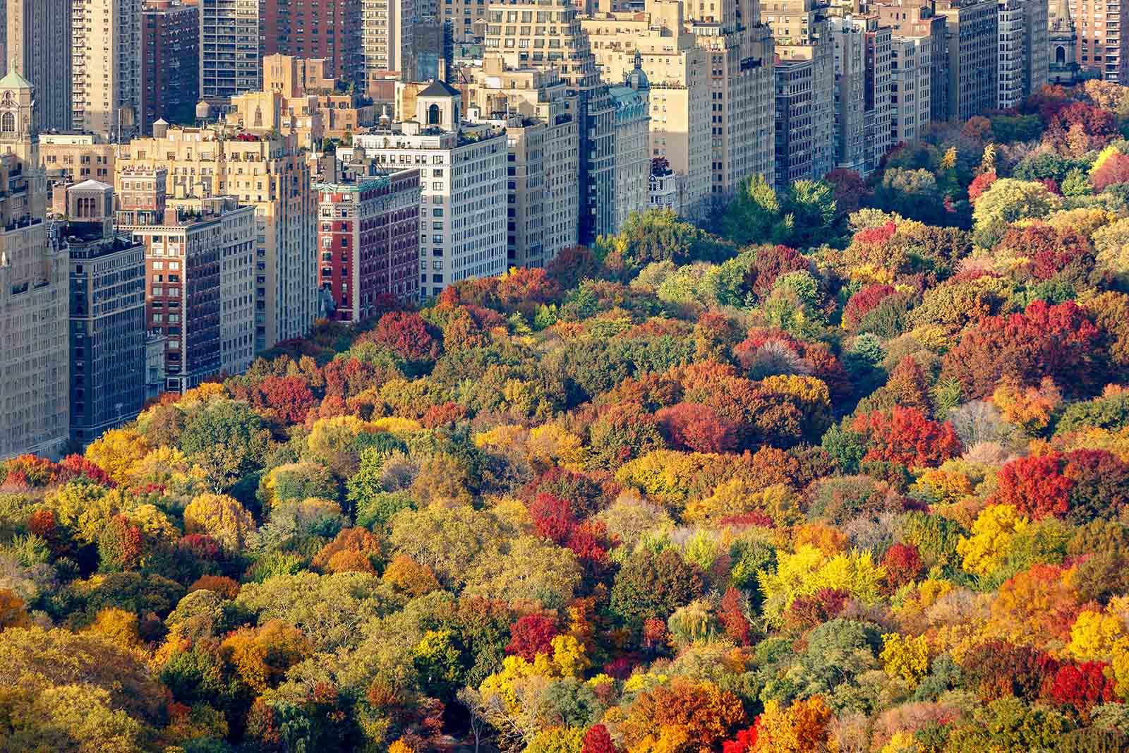 Parques de Nueva York: Central Park