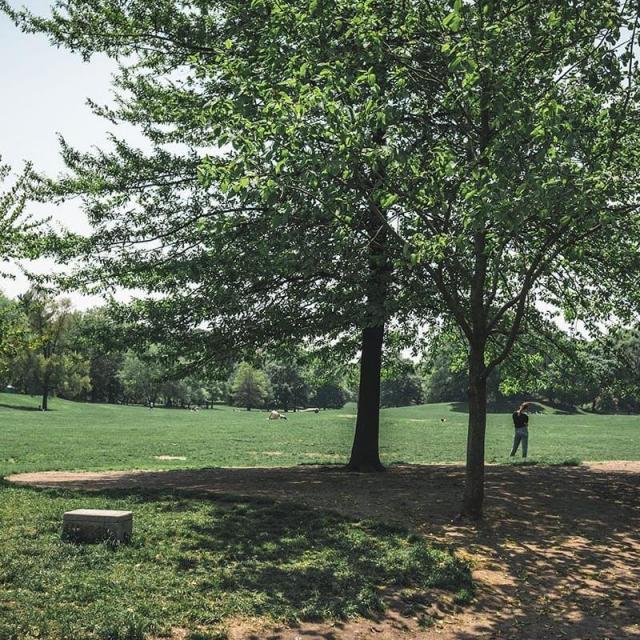 Prospect Park en Brooklyn